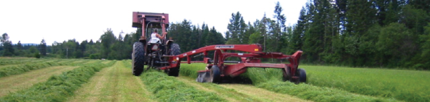 Worker in the fields at Viewfield Farms in Courtenay, BC